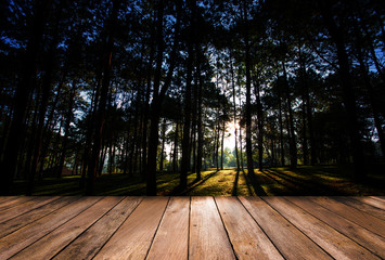 Wood floor and forest with sunrise background