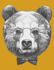 Original drawing of Bear with glasses and bow. Isolated on colored background