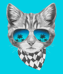 Hand drawn portrait of Cat with mirror sunglasses and scarf. Vector isolated elements.