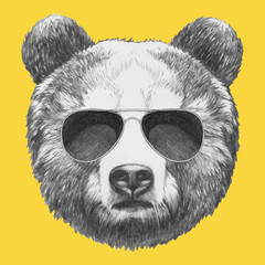 Portrait of Bear with mirror sunglasses. Vector