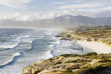 South Africa,Gansbaai,Walker Bay Nature 'Reserve