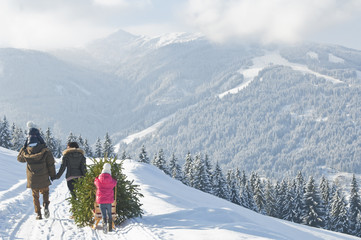 Austria,Salzburg Country,Flachau,View of family carrying christmas tree and sledge in snow