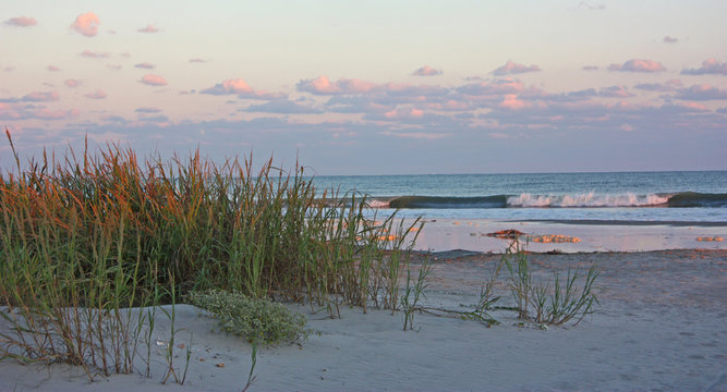 Ocean beach with sea oats at sunset.