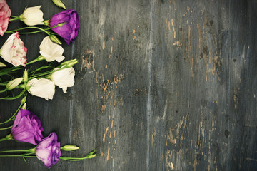 Colorful eustoma flowers on wooden background