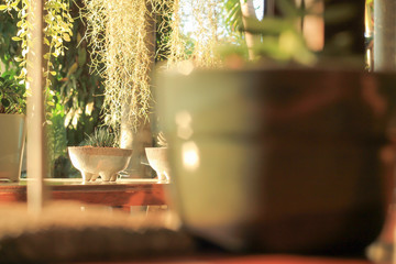 The baton Pattana cafe outdoors.