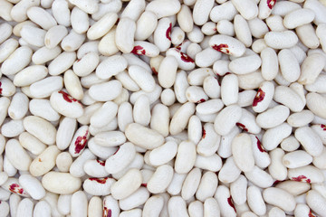 White haricot beans background