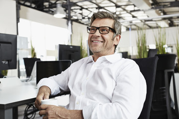 Smiling businessman in office at desk