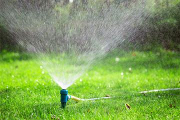 Lawn sprinkler spraying water over grass