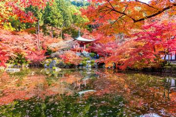 Wall Mural - Autumn at daigoji temple