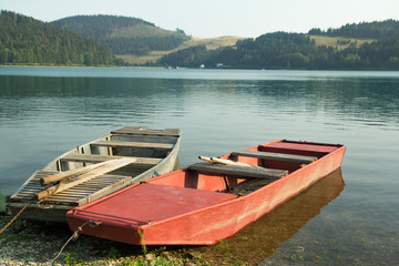 row boats on the lake