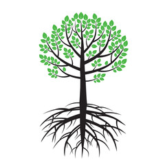 Summer Tree and Roots. Vector Illustration.