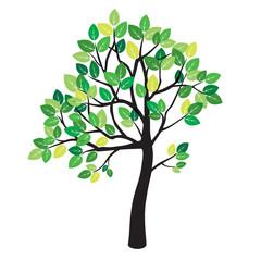 Summer Color Tree. Vector Illustration.
