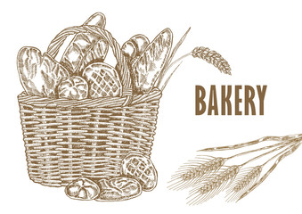 Hand drawm bread and wheat illustration in sketch style