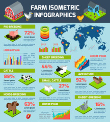 Domestic cattle breeding farm infographic poster