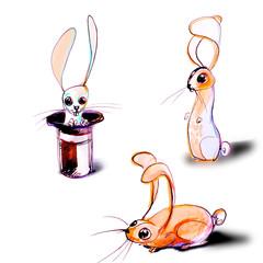 Children's book illustration, rabbits