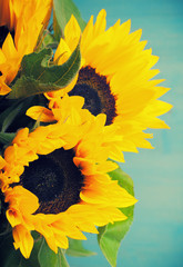 Beautiful sunflowers bouquet in white vase