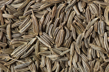 Caraway (Carum carvi) seeds background
