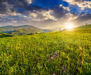 green meadow on a mountain hillside at sunset