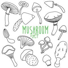 Hand drawn mushroom set