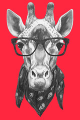 Portrait of Giraffe with glasses and scarf. Hand drawn illustration.