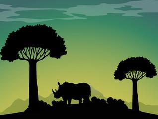 Silhouette rhino in the field