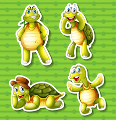 Turtle in four different poses