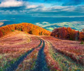 Colorfull autumn morning in the Carpathian mountains