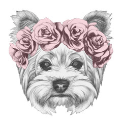 Portrait of Yorkshire Terrier Dog with floral head wreath. Hand drawn illustration.