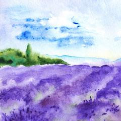 Watercolor lavender fields France Provence landscape