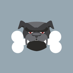 Scary Dog head. Angry Bulldog and bone. Pet head.