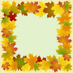 Wall Mural - frame of maple leaves