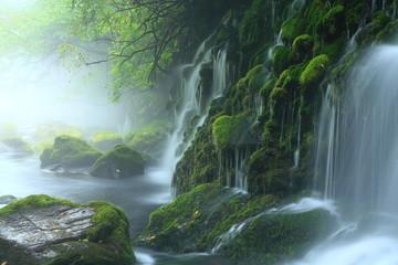 Foto op Canvas 秋田県にかほ市 夏の元滝伏流水