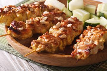 Asian Kebab: Chicken satay with roasted peanuts, horizontal