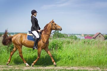Beautiful girl jockey ridding horse in a field