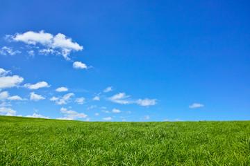 草原と青空 Wall mural