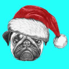 Portrait of Pug Dog with Santa Hat. Hand drawn illustration.