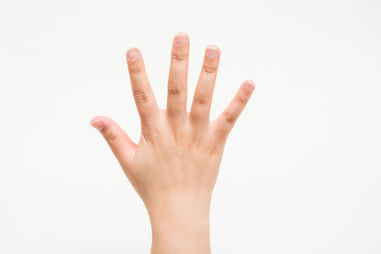 The hands of children No5 子供の手でNo5