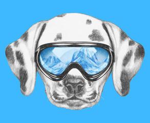 Portrait of Dalmatian with ski goggles. Hand drawn illustration.