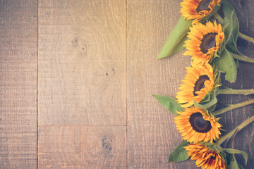 Autumn background with sunflowers. View from above. Retro filter effect