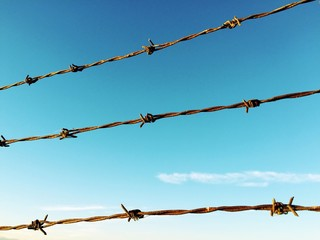 barb wire against blue sky