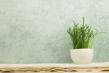 Spa concept with grass in bowl on grey background