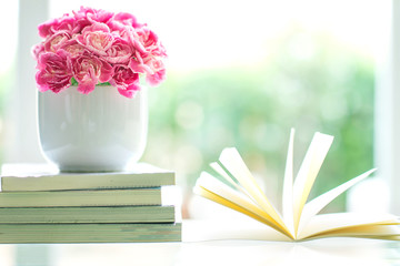 fresh pink carnation flower with books background
