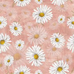Chamomile pattern on grange background