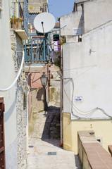 satellite television antennas