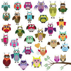 set of owls with different emotions
