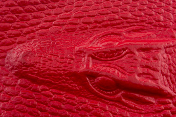 Red crocodile leather with alligator head