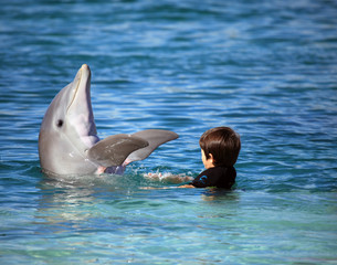 Child playing with a cute dolphin in the blue water