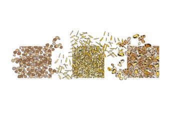 Semi, lenticchie, riso, fagioli
