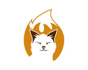 Fox Foxy