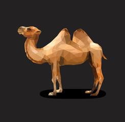 Camel low polygon polygon on a black background